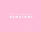 "E.Plytnikaitė ""Nematomi"", 2016 m."